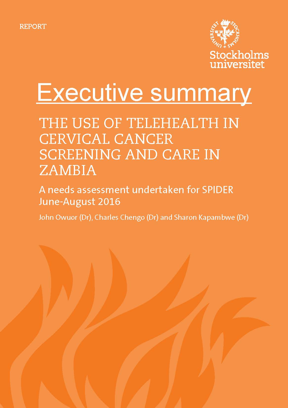 Cover executive summary telehealth Zambia